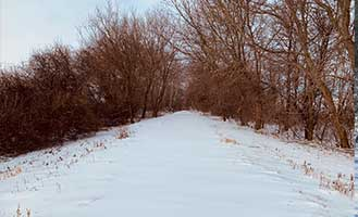 Glacial-Drumlin-State-Trail-winter